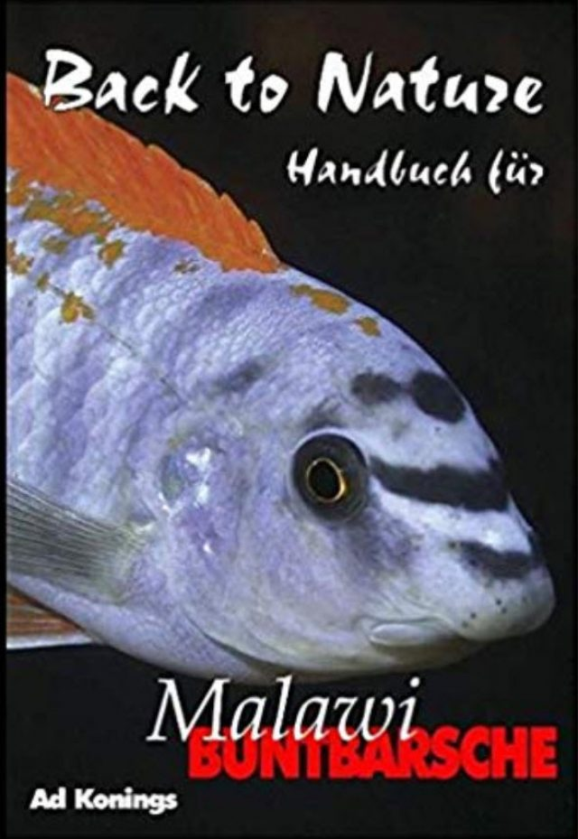Konings, Ad – Back to Nature. Handbuch für Malawi Buntbarsche