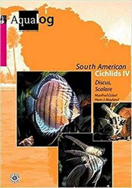 Göbel, M. & Mayland- H.J. – Aqualog, Southamerican Cichlids IV – Diskus und Skalare