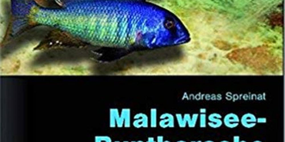 Spreinat, Andreas – Malawisee-Buntbarsche, Teil 1: Erfolgreiche Pflege und Zucht
