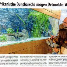 Tag des öffentlichen Aquariums im Lippischen Landesmuseum in Detmold