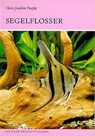 Paepke, Hans J. – Die Segelflosser: Gattung Pterophyllum