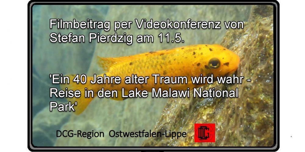 Videokonferenz der DCG-Region OWL am 11.5.21 um 19:30 – Pierdzig, Reise an den Malawisee