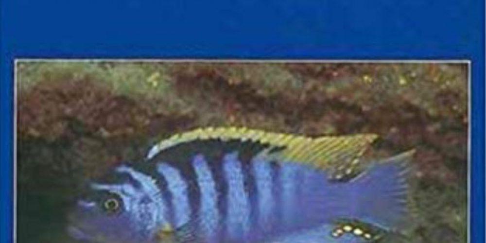 Spreinat, Andreas – Malawisee-Cichliden aus Tansania