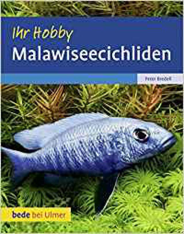 Bredell, Peter – Malawiseecichliden