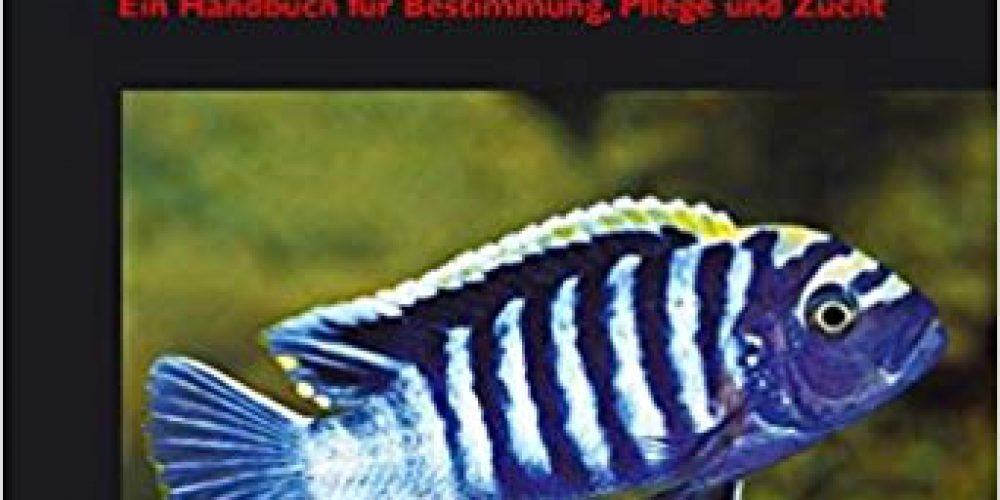 Staeck, Wolfgang – Afrikanische Cichliden, Bd. 2, Buntbarsche aus Ostafrika