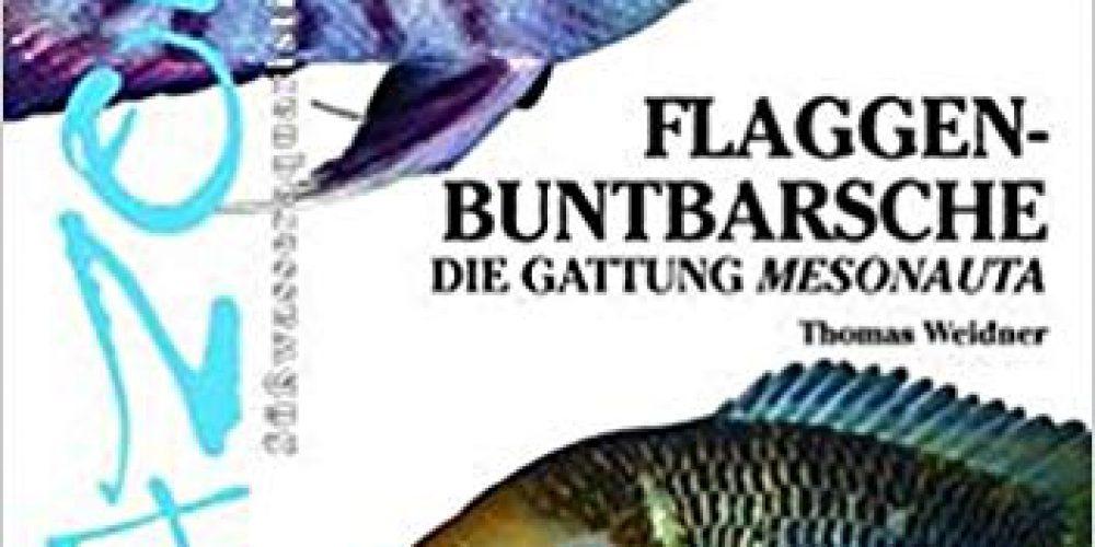 Weidner, Thomas – Flaggenbuntbarsche: Die Gattung Mesonauta