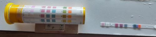Kontrolle der wichtigsten Wasserparameter mit Teststreifen